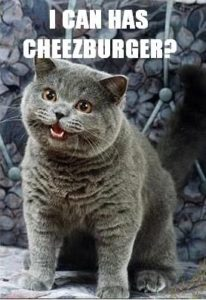 i-can-has-cheezburger.jpg